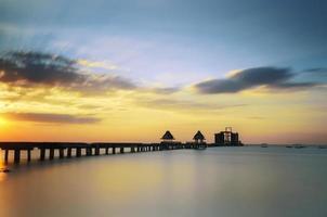 ponte alberato
