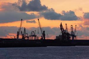 gru nel porto di bilbao al tramonto