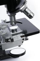 sezione centrale del microscopio foto