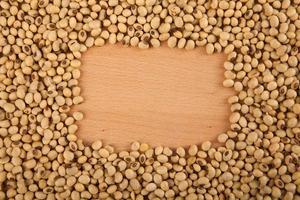 semi di soia con copia rettangolare foto