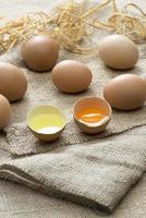 uova biologiche con spazio di copia