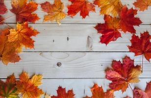 foglie di autunno su sfondo di legno con spazio di copia foto