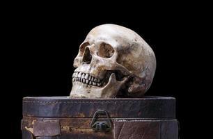 natura morta del cranio umano su uno sfondo nero foto