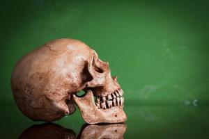 cranio umano stagionato con immagine speculare su sfondo verde, sti foto