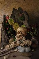 natura morta con un teschio umano con piante del deserto, cactus,