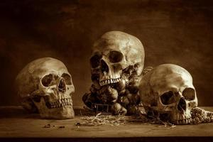 cranio di natura morta foto