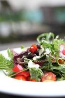 insalata in primo piano foto