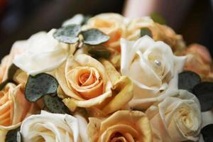 primo piano dei fiori delle rose foto