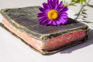 vecchia bibbia santa foto