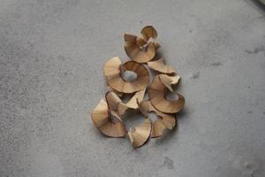 bella matita legnosa tagliata foto