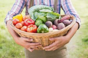 contadino con cesto di verdure