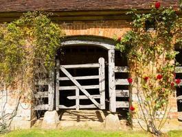 porta per stalla in legno vecchia di centinaia di anni con rose rosse foto