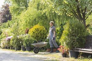 giardinieri foto