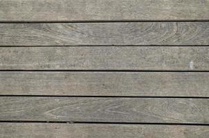 trama del tronco di legno modello foto