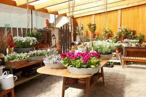 interno del negozio di fiori foto
