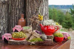 sacchetti con erbe curative, teiera rossa e vasetti di marmellata