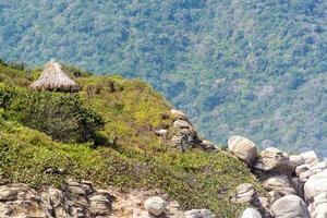 capanna nella giungla foto