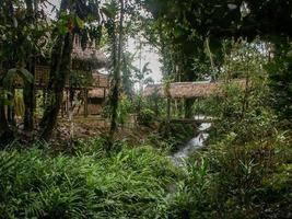 capanne nella giungla foto
