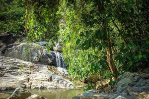 cascata con piscina nella giungla tropicale, na muang, koh samui foto