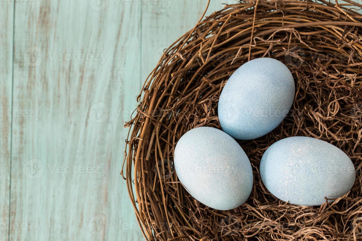 três ovos de Páscoa azuis em um ninho foto