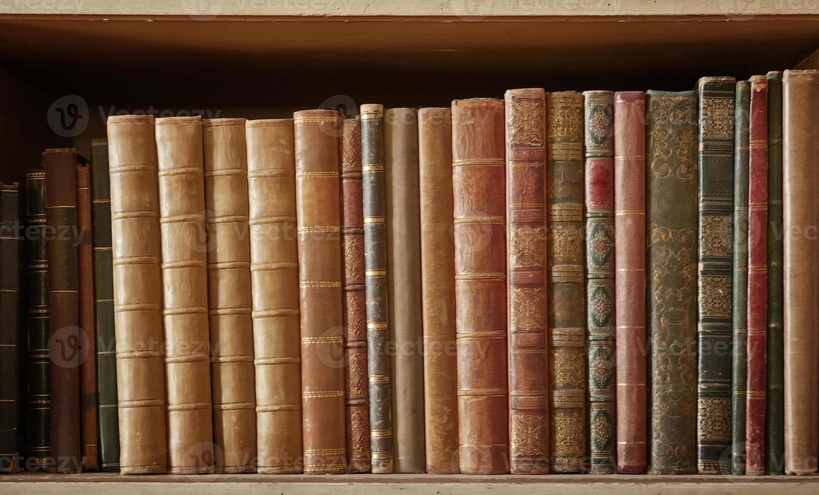 muitos livros foto