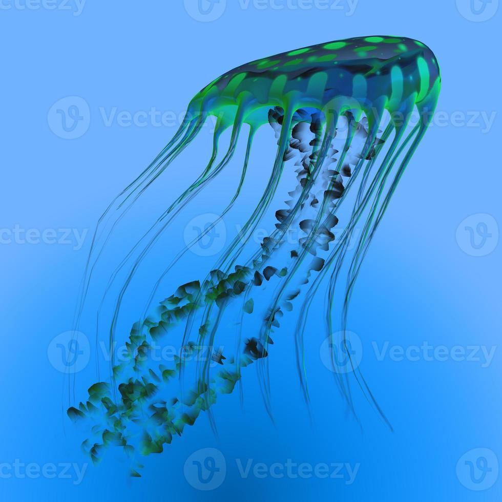 água-viva azul verde foto