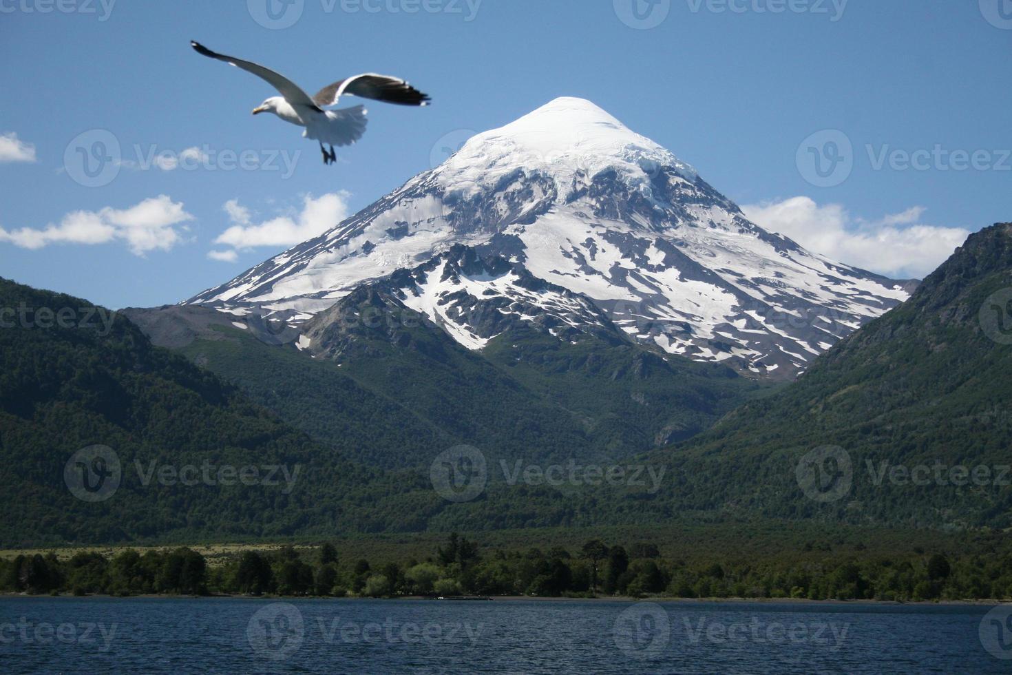 parque nacional vulcão lanin, patagonia, argentina foto