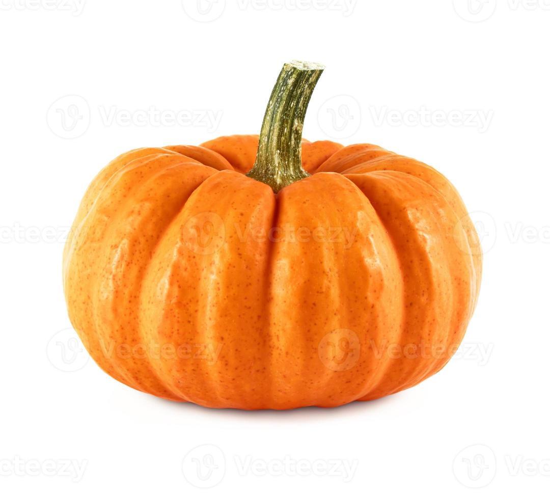 laranja vibrante manchado de abóbora e caule em fundo branco foto