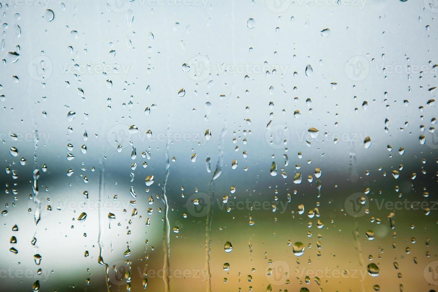 pingos de chuva foto