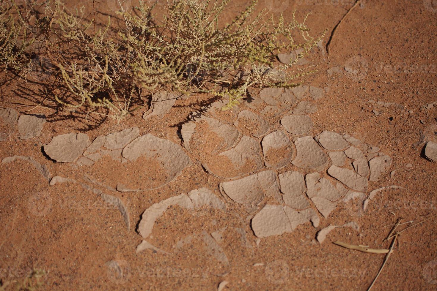 trockenheit em der wüste sahara foto
