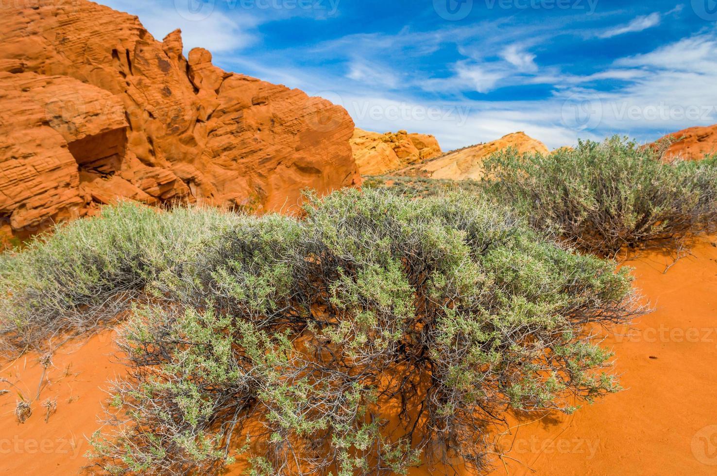 deserto de pedra foto