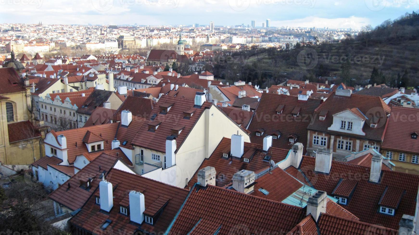 telhados vermelhos foto
