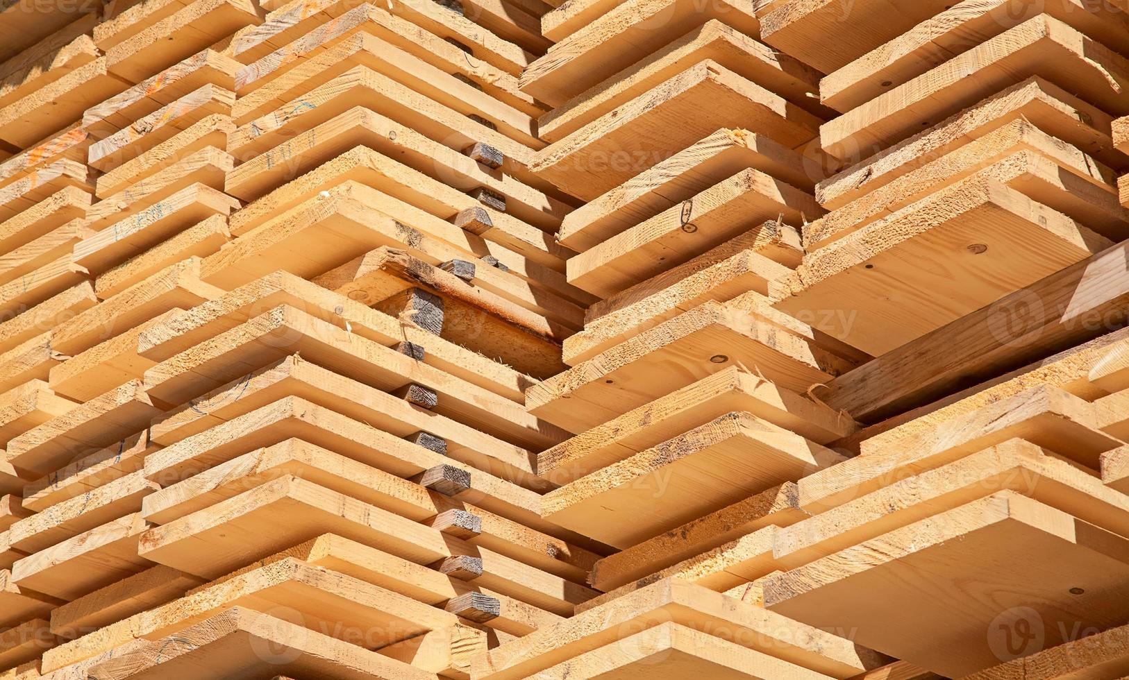 pregos de madeira frescos foto