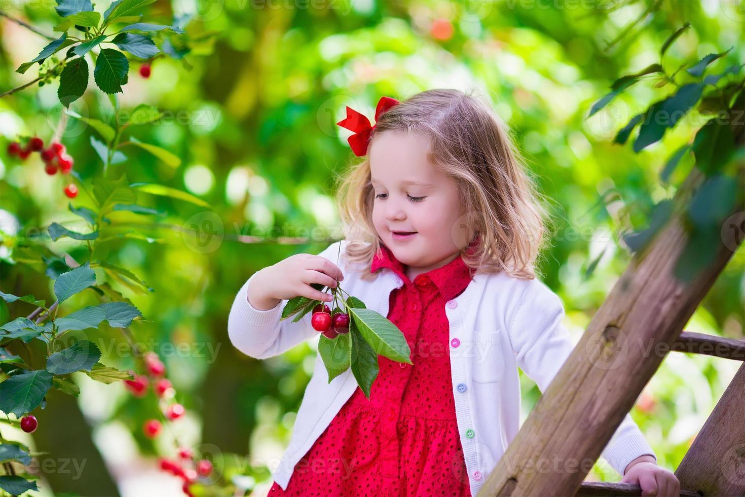 menina bonitinha escolhendo bagas de cereja frescas no jardim foto