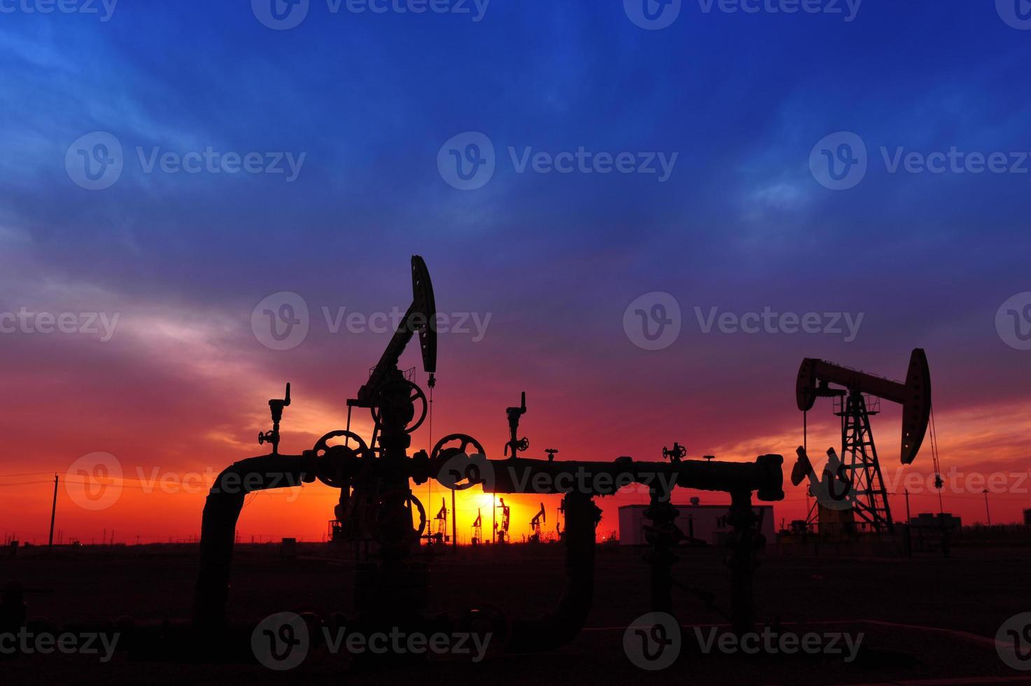 a bomba de óleo foto