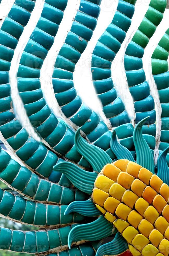 cauda de dragão. foto