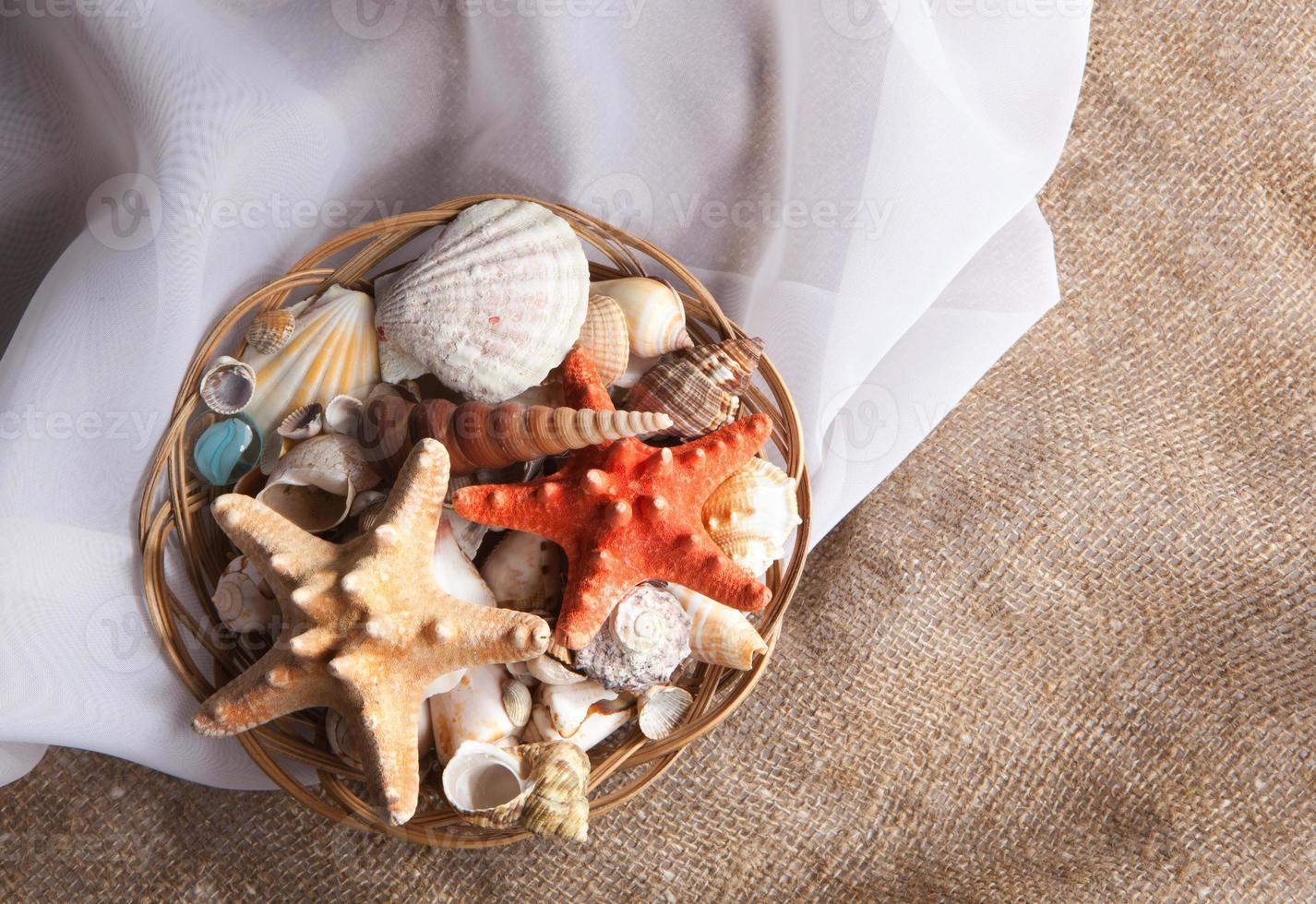 conjunto de conchas em uma cesta em um tecido de seda foto