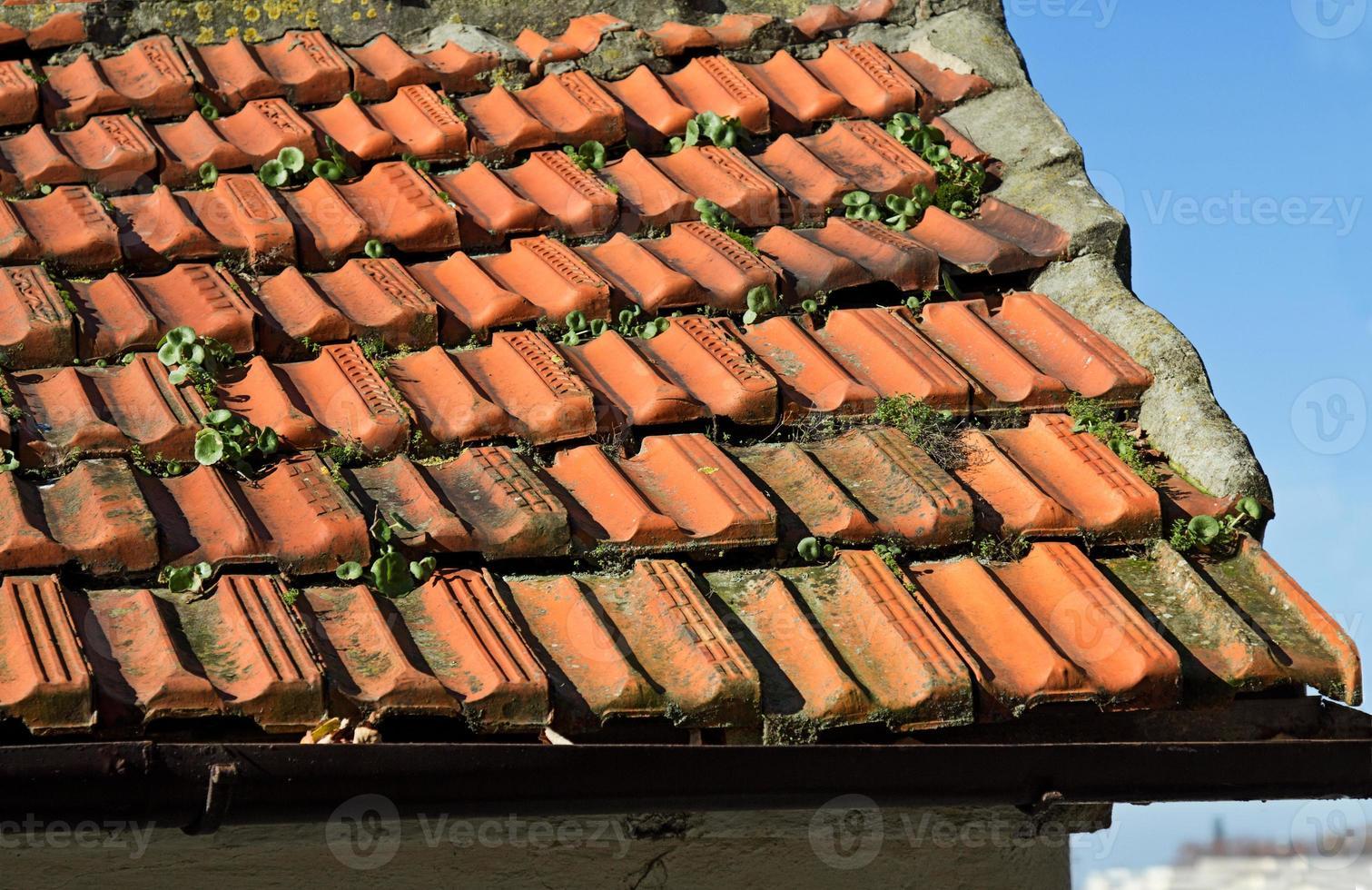 detalhe da telha vermelha da cidade velha foto