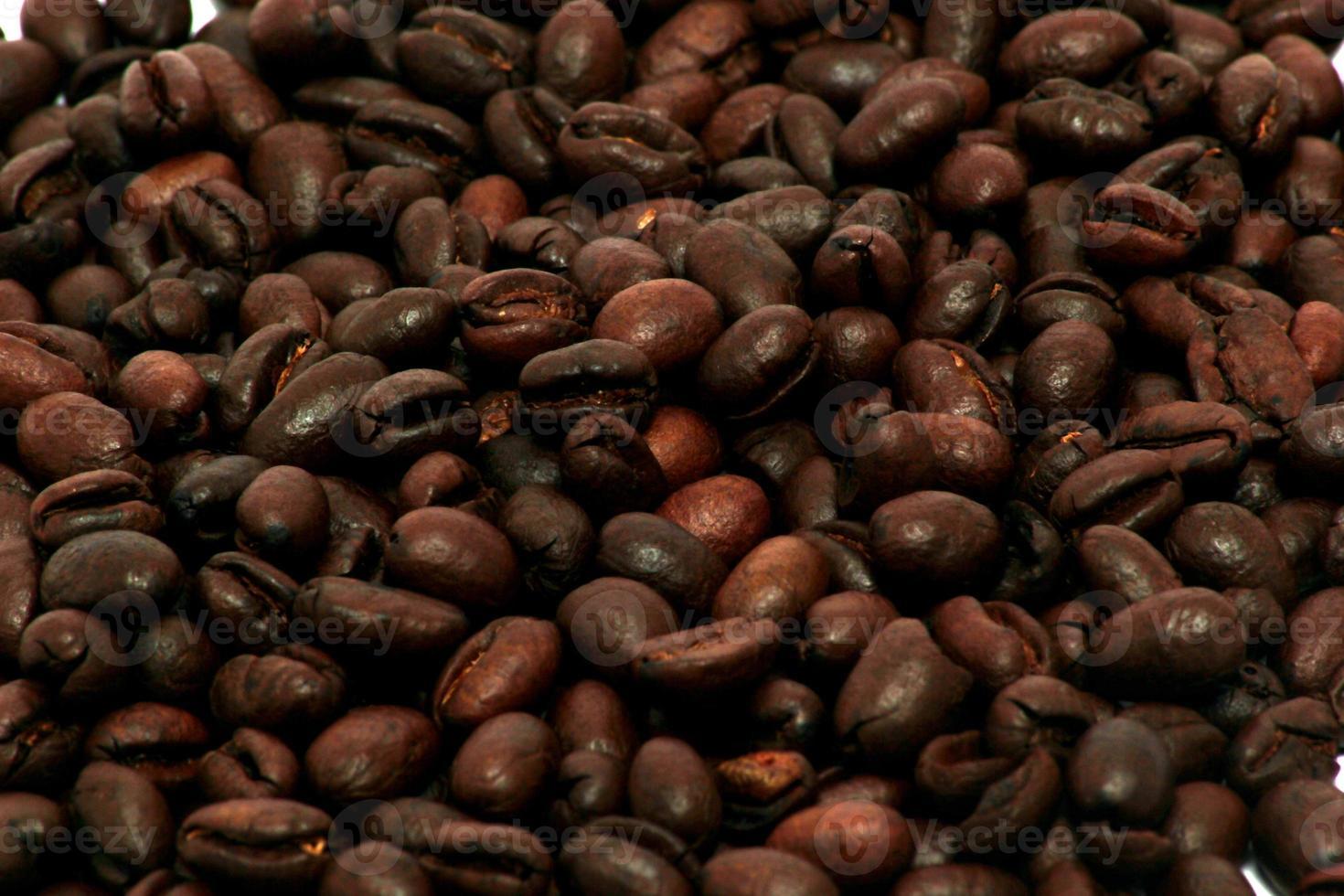 grãos de café peaberry foto
