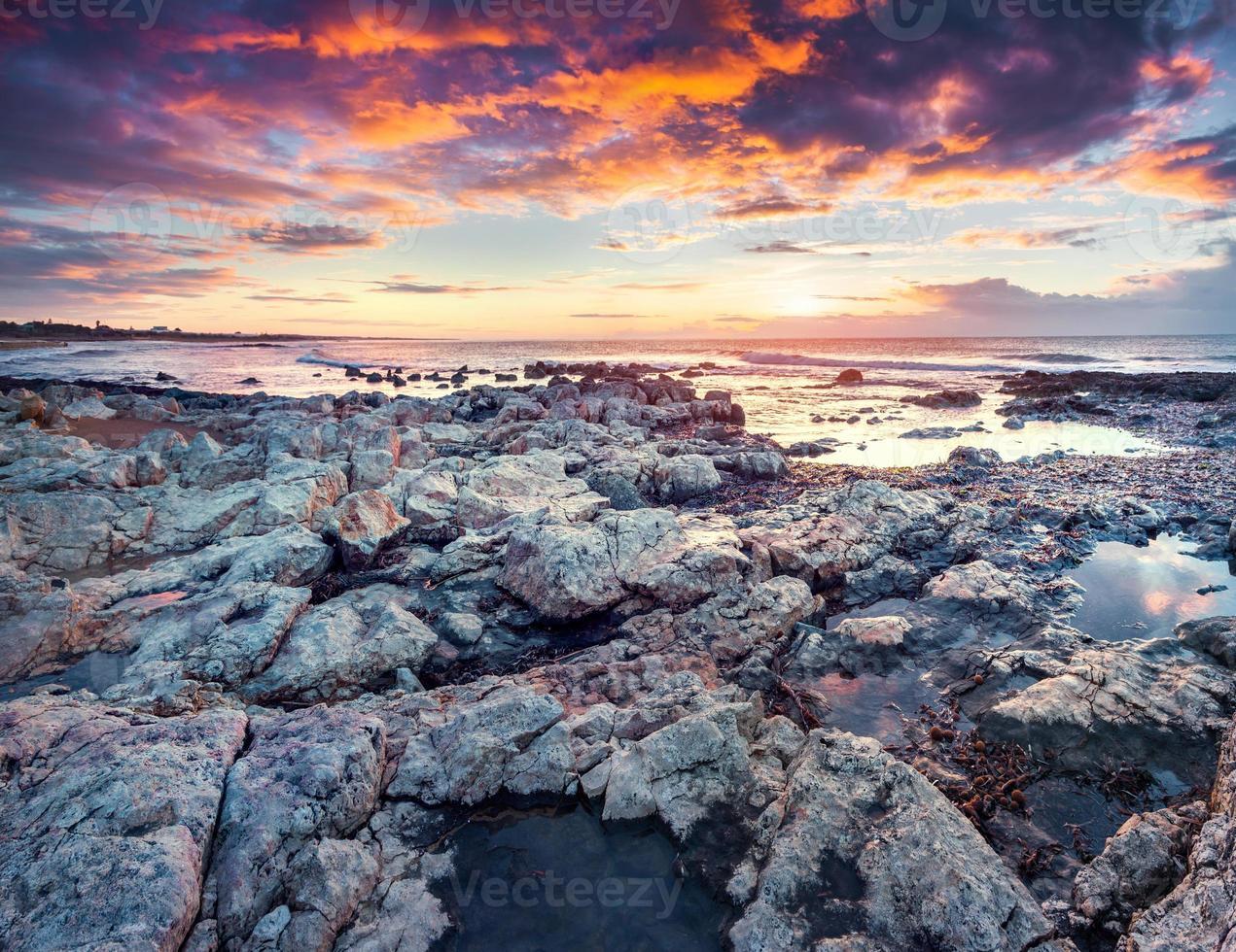 dramático nascer do sol de primavera na capa do passero foto