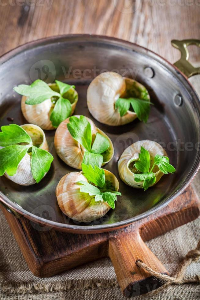 caracóis quentes e frescos com manteiga de alho e salsa foto