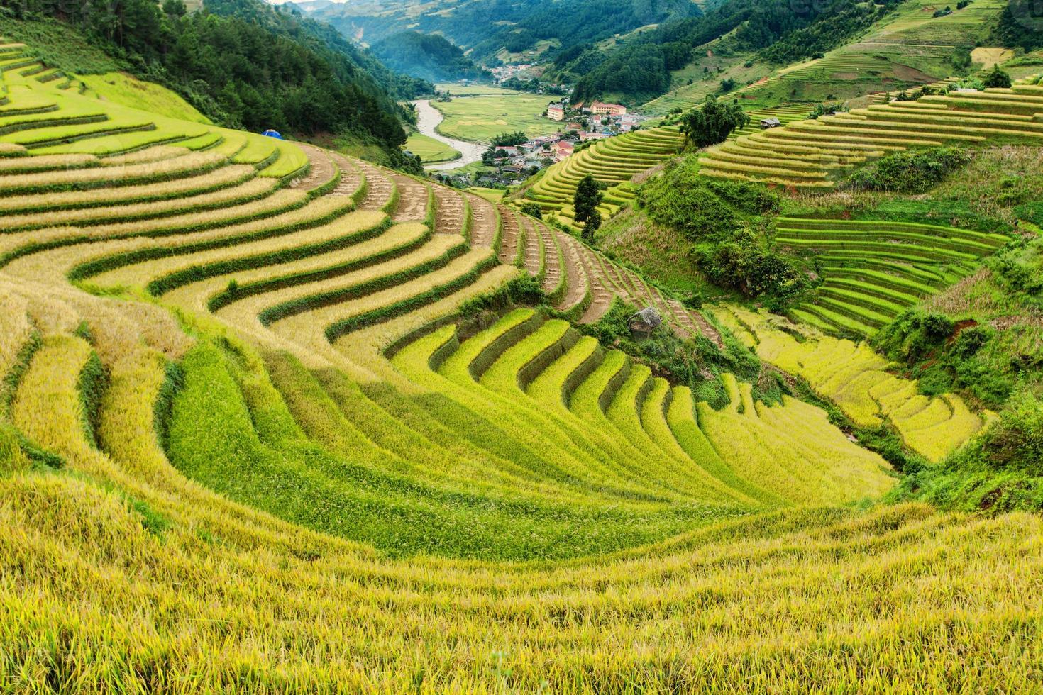 campos de arroz em terraços de mu cang chai, yenbai, vietnã foto