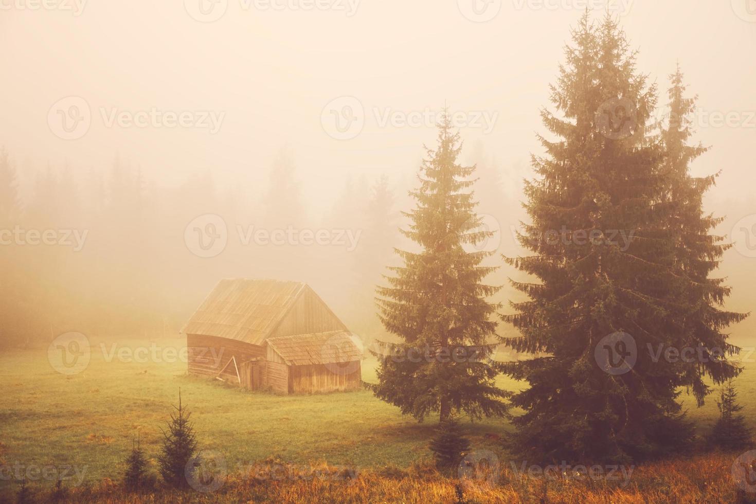 cabine no campo foto