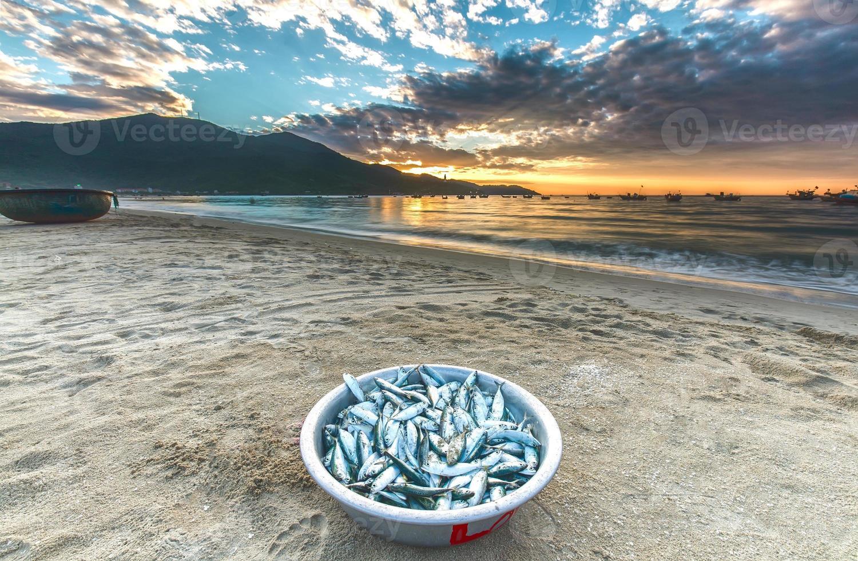 peixe de bronze colhido de manhã cedo foto