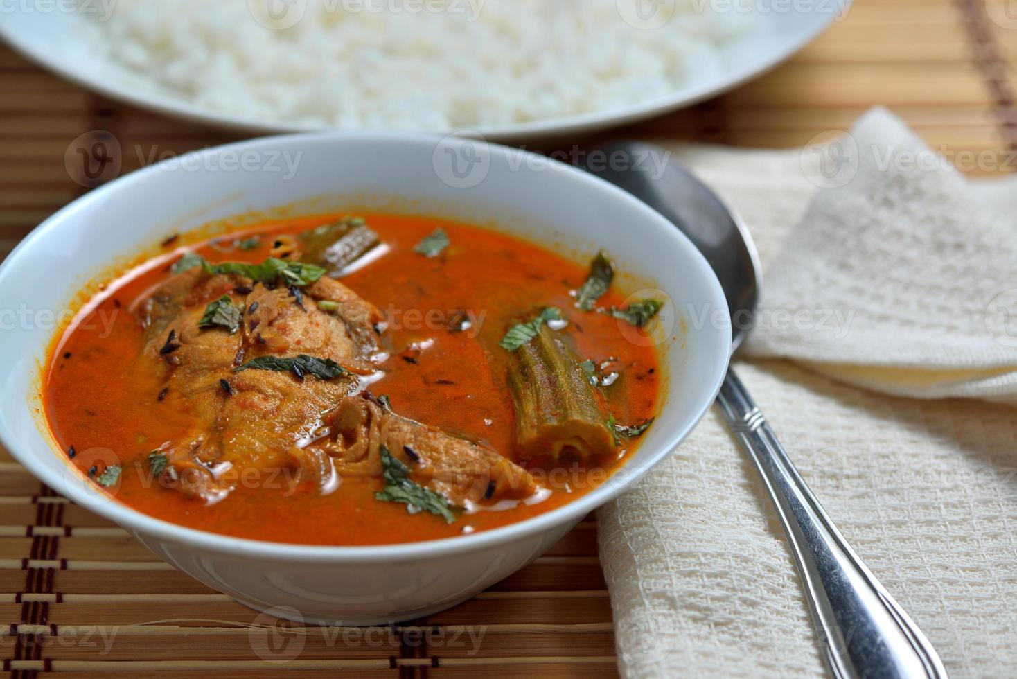 tamilnadu trevally gracejo de peixe com arroz branco foto
