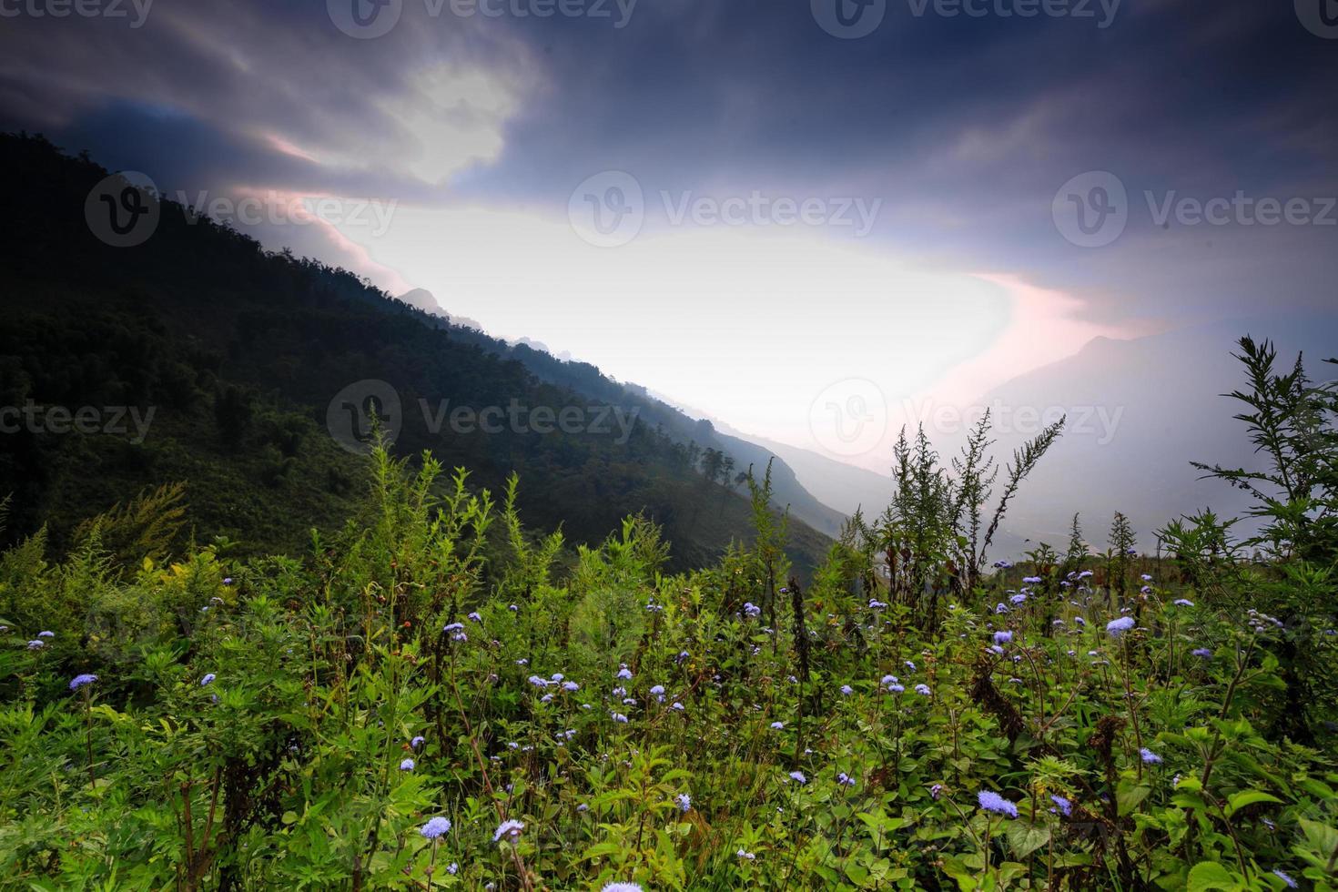manhã na sapa alpina foto