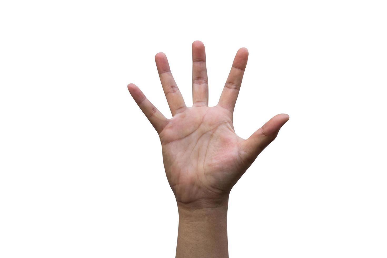 mão humana isolada foto