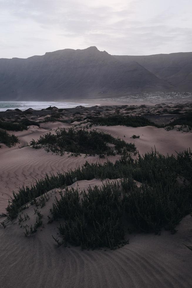 dunas de areia perto do corpo de água foto