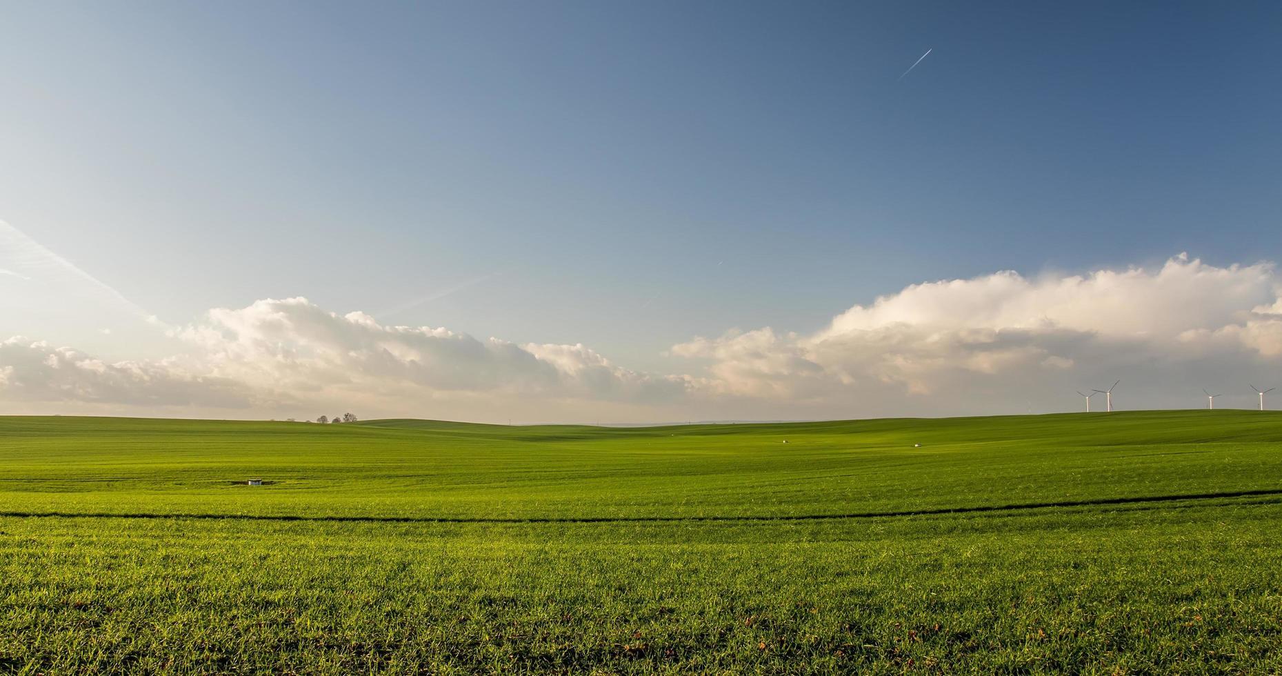 campo gramado verde com céu azul foto