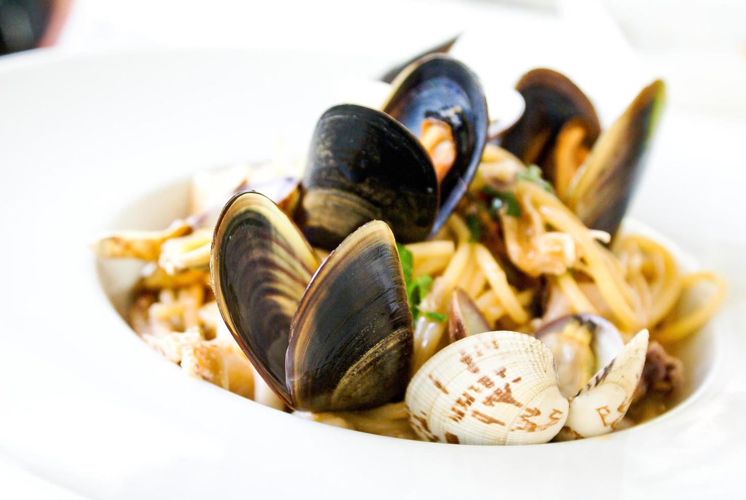close-up de prato de molusco foto